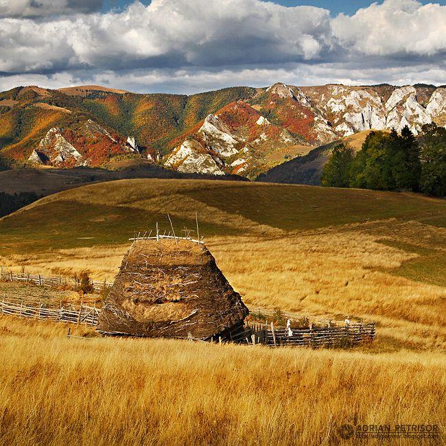 Apuseni Mountains, Transylvania by Adrian Petrisor