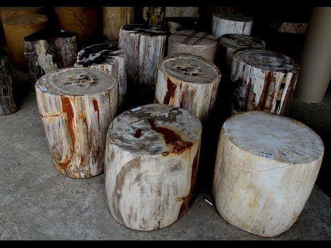 Petrified Tree Stump Side Table | IndoGemstone