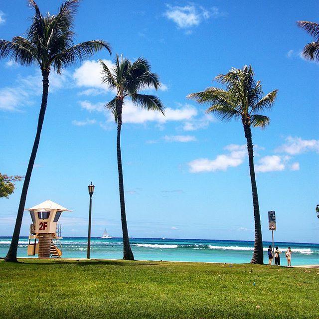 【kamera_obasan】さんのInstagramをピンしています。 《#canon#sigma#t6i #hawaii#oahu#waikiki #beach#ocean#blue#sky #palmtrees #キャノン#シグマ#一眼レフ #ハワイ#オアフ#ワイキキ #ビーチ#青い#空#海 #椰子の木#カコウミ #カコソラ #おはようございます おはようございます 土曜日のハワイ とっても爽やかな朝》