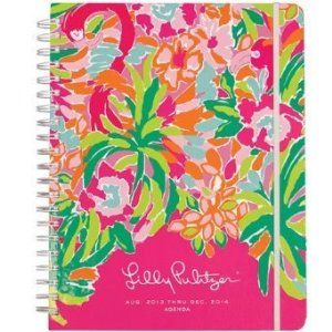 I use this Lily Pulitzer planner everyday and it keeps me so organized with school and my life! Recommend it!