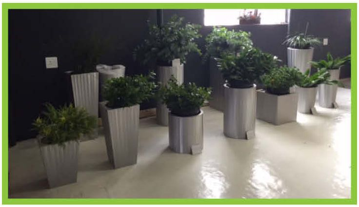 Allsorted Planter Pots