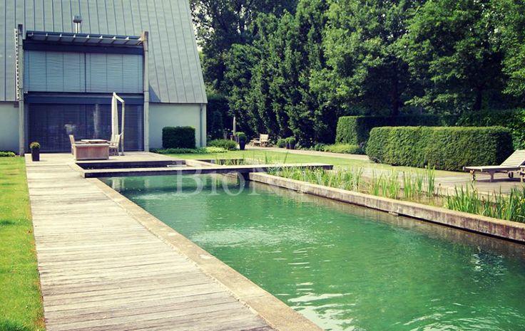 148 melhores imagens de piscinas biol gicas algunos for Piscinas biologicas