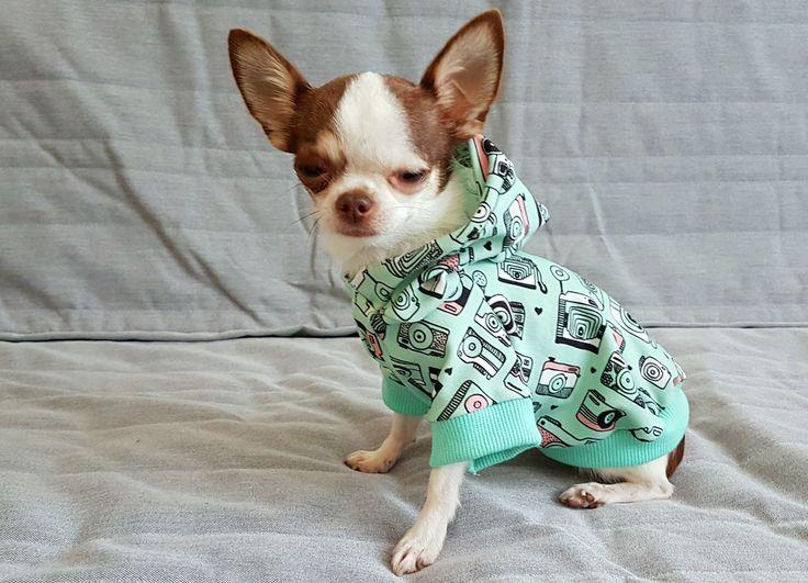 Small Boy Warm Dog Hoodie Boy Yorkie Dog Sweater