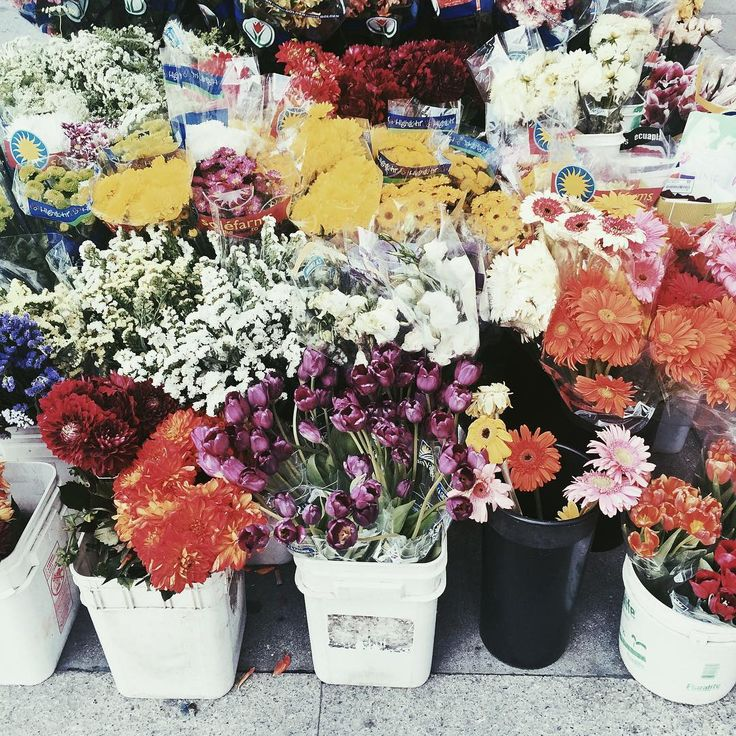 Take a stroll through the fresh flower market at Union Square in San Francisco, located right outside of Grand Hyatt San Francisco.