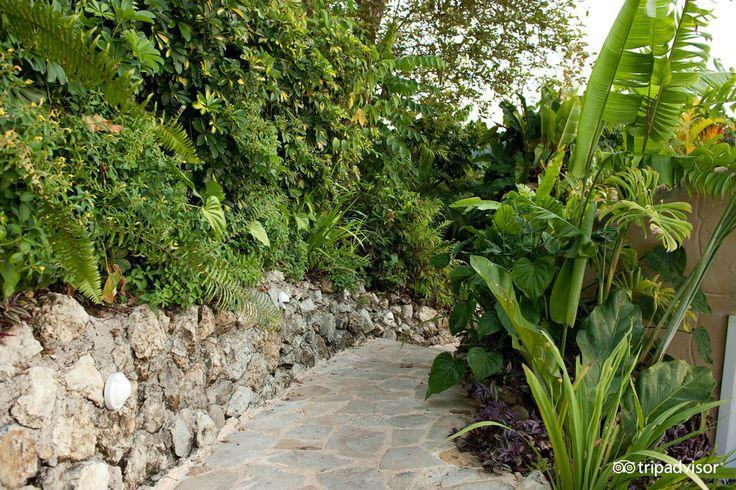 Gaia Hotel & Reserve - UPDATED 2017 Reviews & Price Comparison (Costa Rica/Manuel Antonio National Park) - TripAdvisor