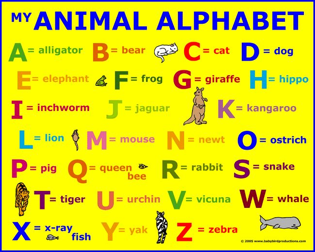 This Animals Alphabet Word List Appears On Children S Clothing Parents Clothes And Unique Gifts Alphabet Pictures Alphabet Phonics Alphabet Words
