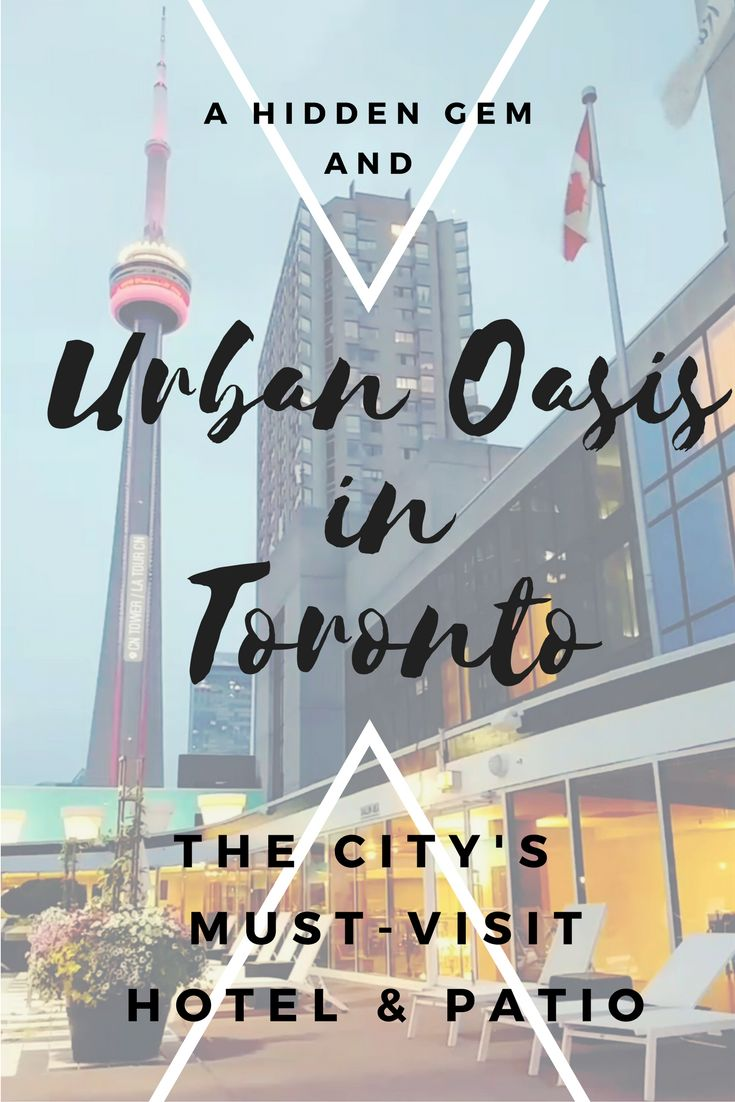 Toronto's Hidden Gem: An Urban Oasis Hotel   Speaking Dee