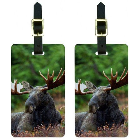 Moose Male Bull Antlers Luggage Tags Suitcase Carry-On ID, Set of 2, Multicolor