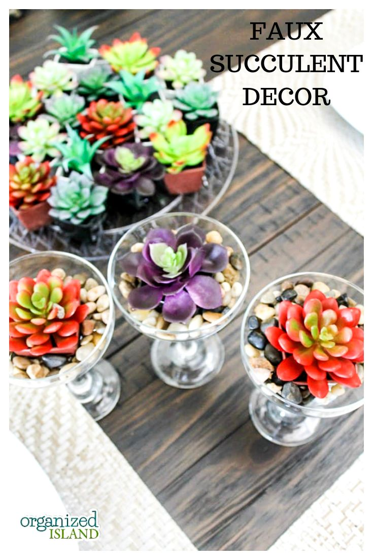 Bring the beauty of succulents into your home, wit…