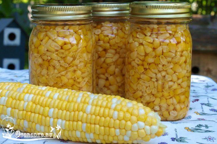 Узнайте, как закрыть кукурузу на зиму, затратив минимум времени и усилий. Вкусная вареная кукуруза станет прекрасным дополнением ко многим блюдам в зимнее время, а дети просто обожают это вкусное лакомство….