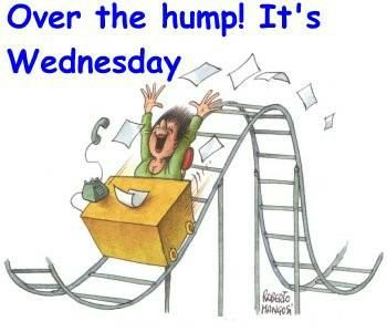 Wednesday hump day | Wordless Wednesday - Hump Day