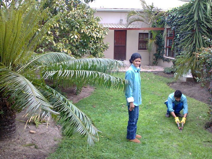Gardening Services - Somerset West, Cape Town