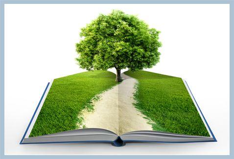 Qué sabes acerca de la fabricación de papel y el medio ambiente?