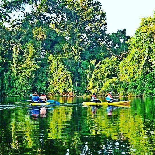 Reposting @viajesonline0: ☕ Hoy iniciamos el día con una hermosa imagen del departamento de Amazonas. 👉👉 Lugar selvático al sur de Colombia con un gran potencial para eñ desarrollo del turiamo natural; agracias a su gran variedad de atractivos naturales que no existe en otro lugar del planete. 👇👇 💎💎💎 Follow 👉 @viajesonline0 for more information about trips. _____________________________________#viajesonline #viajar #travel #cities #nature #travels #bestoftheday #instatravel