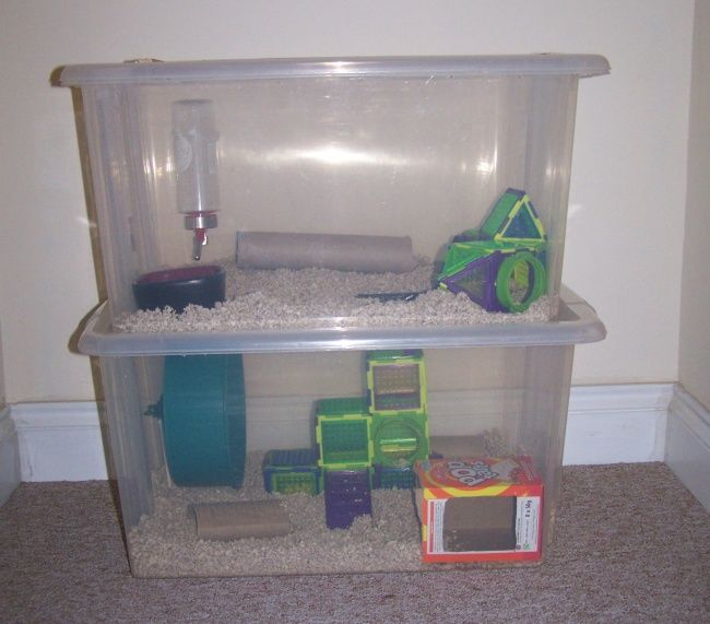 handy guide to making inexpensive custom habitats for your tiniest ...