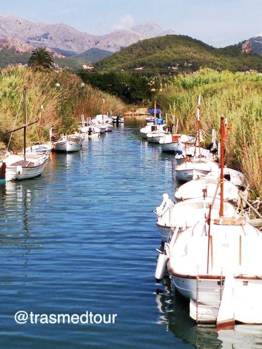 Port d'Andratx, puerto natural en Mallorca, ha pasado de ser un antiguo puerto de pescadores a ser también un lugar turístico y visitado en Mallorca, con actividad náutica. El Puerto es un lugar tranquilo y se combinan compras, sol y ocio. ofrece paseos, buenos restaurantes, y actividades relacionadas con el mar. La máxima animación se concentra en el paseo marítimo y el muelle, donde se sitúa el edificio de la Lonja, donde se puede comprar les capturas de peces frescos de los pescadores,