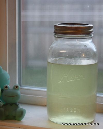 10 Ways to Use Lemon Balm - Homespun Seasonal Living