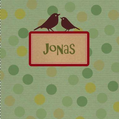 Een vintage groen geboortekaartje met stippen en vogels en een nostalgisch etiket voor de jongensnaam.