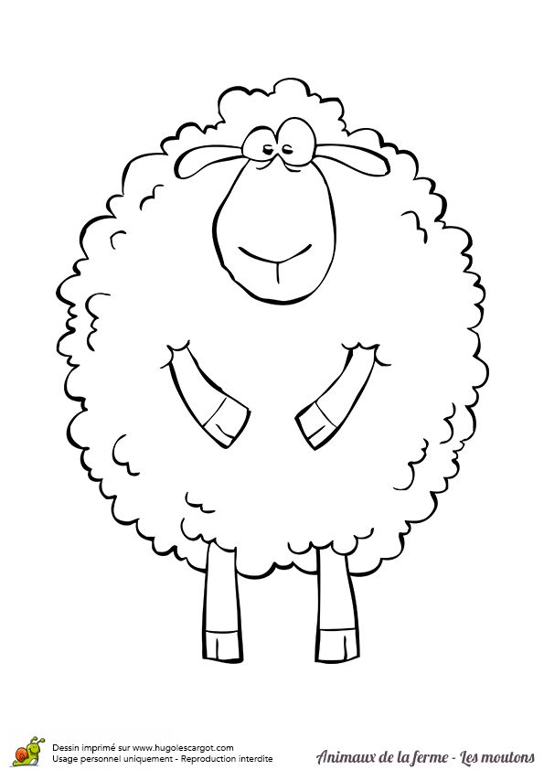 Coloriage d'un gros mouton souriant