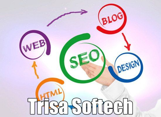 http://www.trisasoftech.com/why-you-need-seo-services-for-your-website-see-the-facts/ Why you need #SEOservices for your website – see the facts