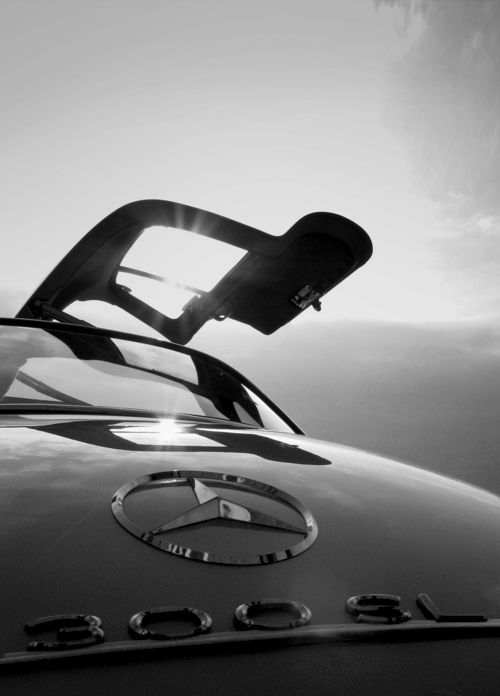 #Mercedes Benz 300 SL Gullwing