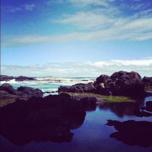 Beautiful Cape Schank, a beautiful afternoon