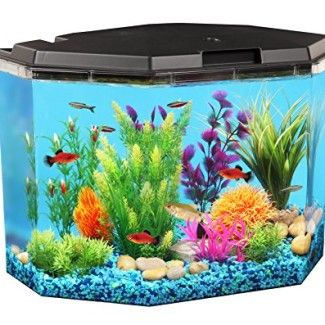 API Semi-Hex Aquarium Kit with LED Lighting and Internal Filter, 6-1/2-Gallon. Only 54.99$!