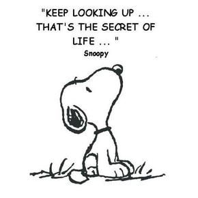 snoopy quote                                                                                                                                                                                 More