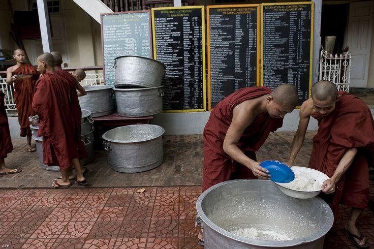 Három módszert vizsgáltak meg, ebből kettőt együtt kellene alkalmazni az arzénmentes rizshez.