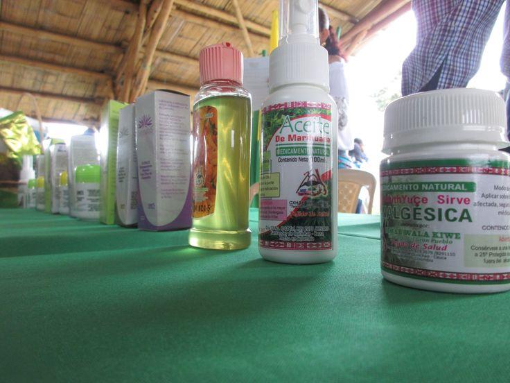 En Cauca nace la primera Cooperativa de cannabis del país | El Nuevo Liberal
