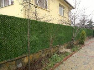 çim çit duvar