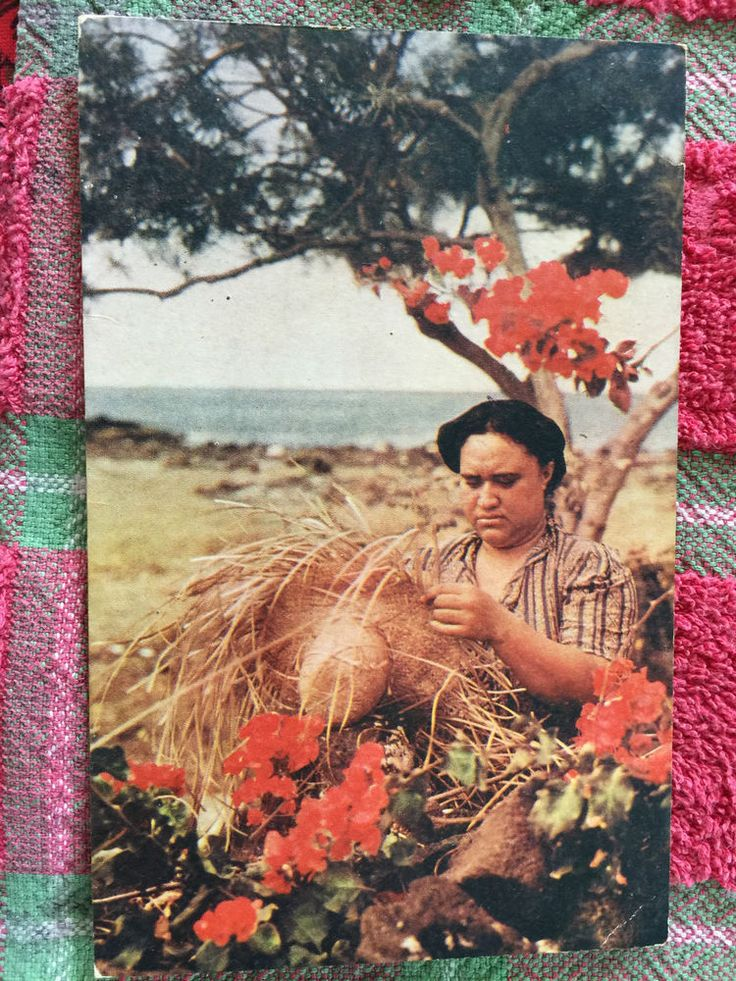 Vintage Hawaiian Postcard of Hawaiian Hat Weaver Using Lauhala to Make The Hat | eBay