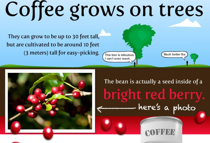 Only one thing is certian about coffee.... Wherever it is grown, sold, brewed, and consumed, there will be lively controversy, strong opinions, and good conversation. ~ Mark Pendergrast http://i-wish-for.co.cc/coffee/