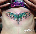 moth by yadou on deviantart