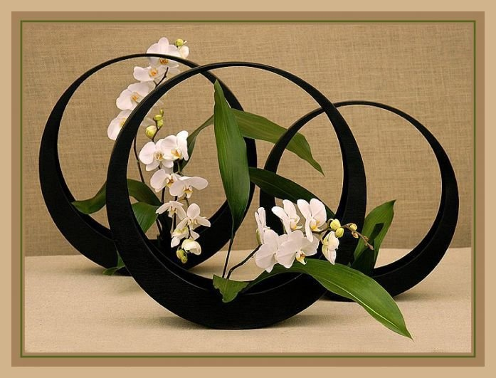 ikebana beautiful circles