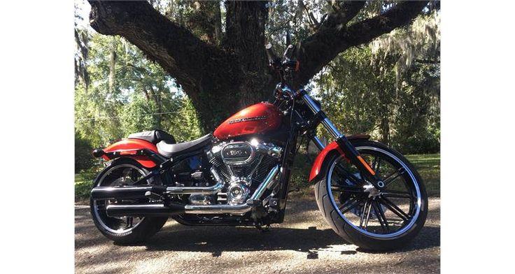 2019 Iron 1200™ HarleyDavidson® Harley davidson