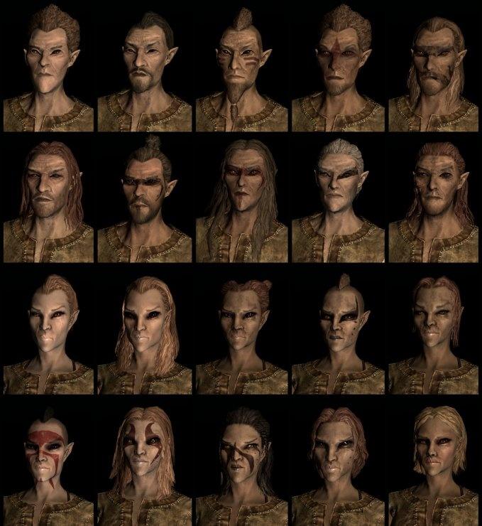 Wood Elf Or Bosmer Race And Their Names In Skyrim The Elder Scrolls V