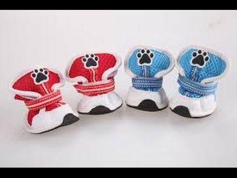 Aprendiendo Todas De Hacer Con Para Perros Como Zapatos Las Moldes N80wnm