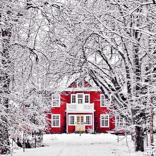 Red house hidden in snow covered trees