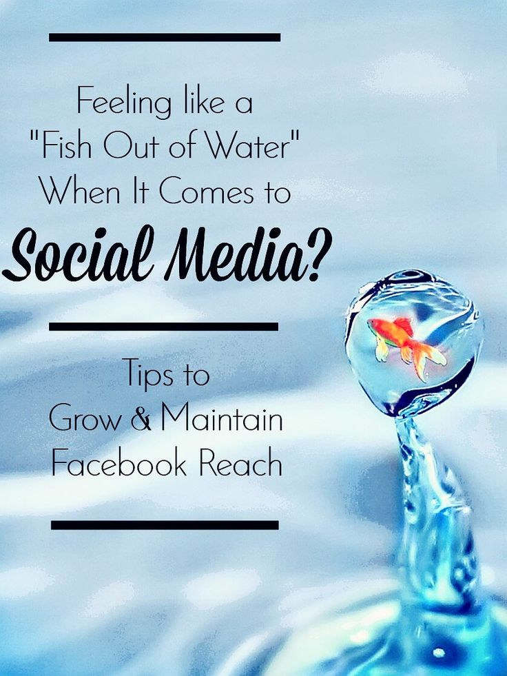 Feel like a fish out of water on Social Media? Tips to Grow and Maintain your Facebook Reach.