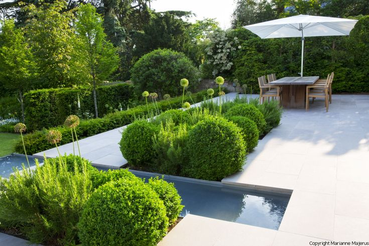 Contemporary architectural garden in Kensington, West London
