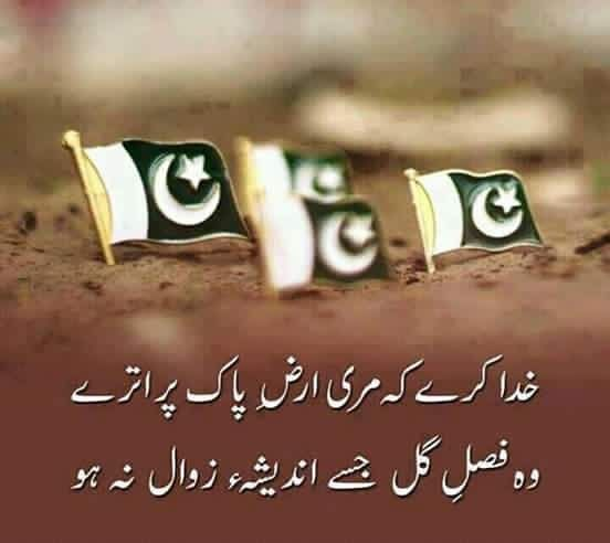 The 25+ Best Happy Independence Day Pakistan Ideas On