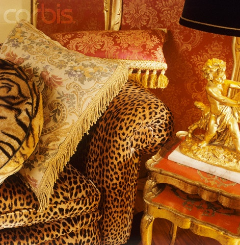Best 25 Leopard Living Rooms Ideas On Pinterest Cheetah Living Rooms Animal Print Decor And