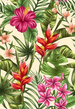Tropical padr o sem emenda floral com plumeria e flores de hibisco Banco de Imagens