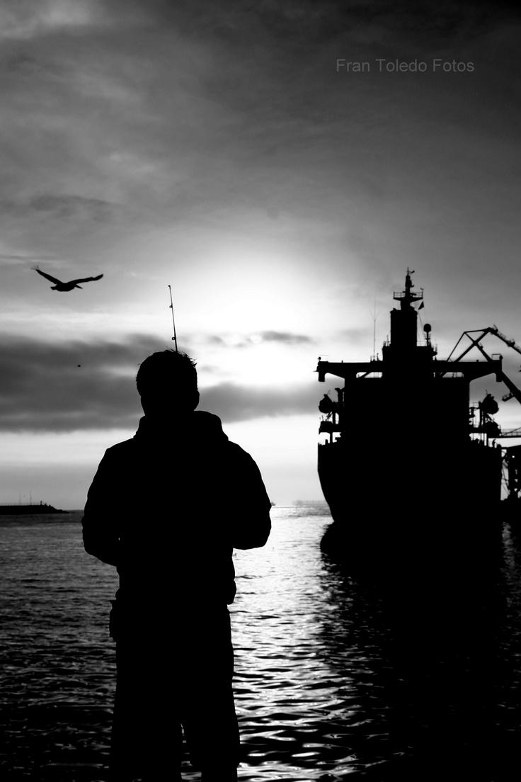 Bird, man, boat. San Antonio, Valparaiso, Chile - Fran Toledo Fotos