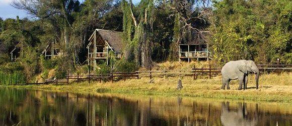 Savute Safari Lodge has thatched chalets overlooking a waterhole.