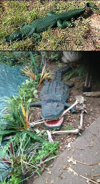 new orleans the bayou alligators gotta have a gator even an halloween porchhalloween stuffparty decoration - New Orleans Halloween Parties