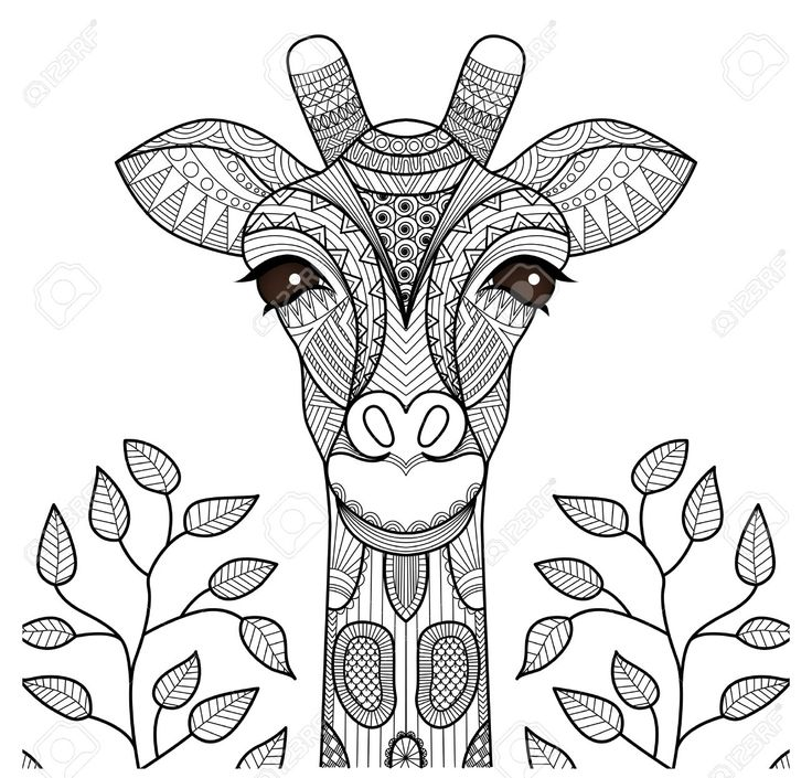 zentangle giraffe head for coloring page shirt design and so royalty free - Coloring Page Elephant Design