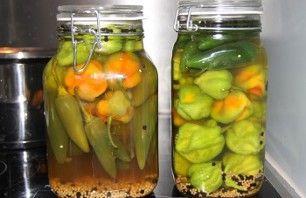 Recept voor ingemaakte Jalapeno pepers | Vers van de Teler