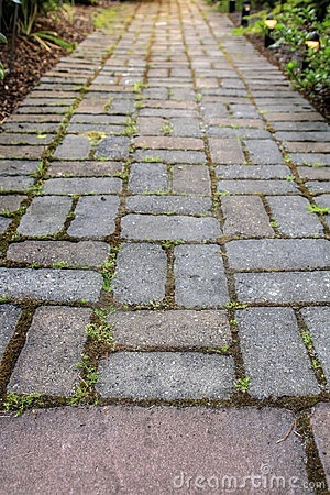 paver paths for the driveway?